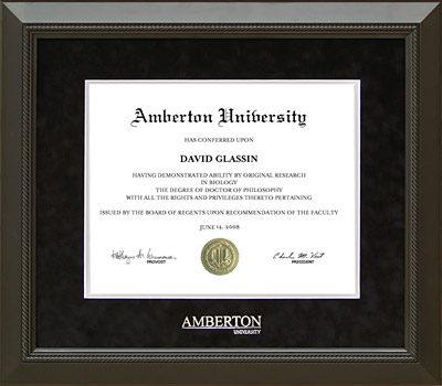 Amberton University Classic Frame in Black Suede