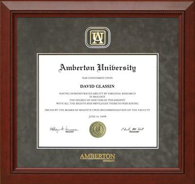 Amberton University Designer Frame in Grey Suede