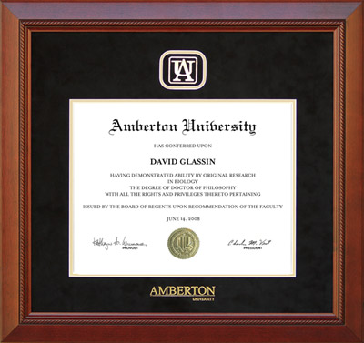 Amberton University Designer Frame in Black Suede