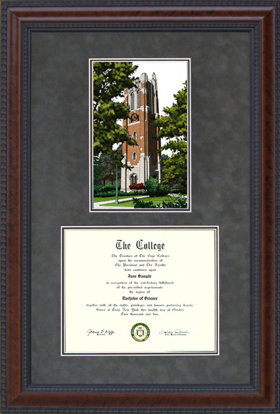 Michigan State University Document Frame With Beaumont