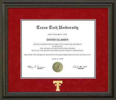 Texas Tech Diploma Frame in Red Suede Mat, Gold Embossed Double T ...