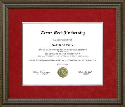 Texas Tech Diploma Frame with Red Suede Mat | Frames of Achievement