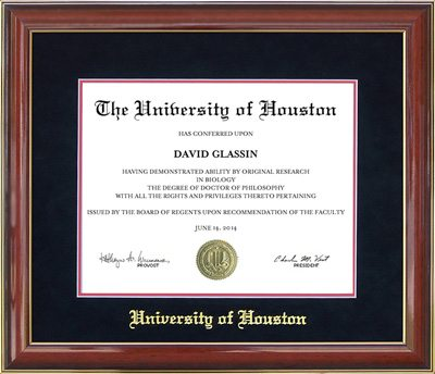 UH Diploma Frame with Gold Embossed Mat | Frames of Achievement