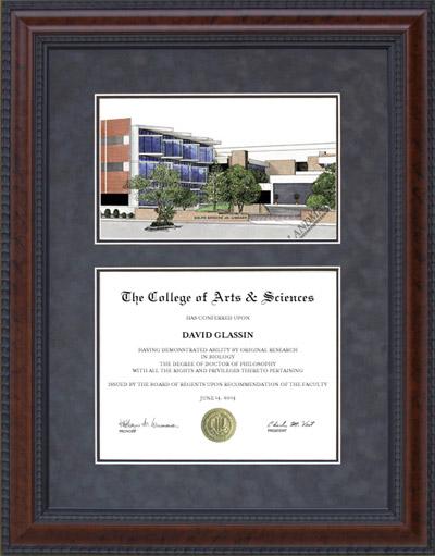UT Health Science Center, San Antonio (UTHSC) Lithograph